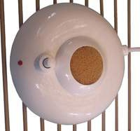 Fan heater for a bird cage