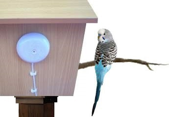 heated bird home